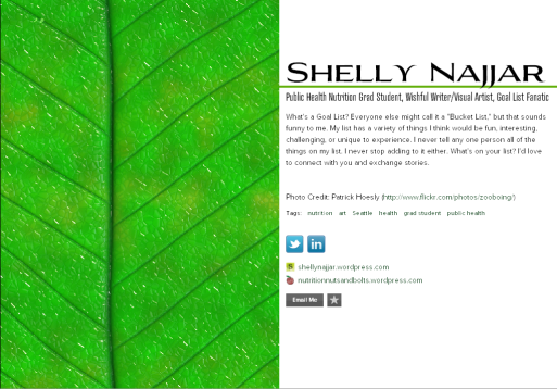 screenshot of my about.me/shellynajjar page